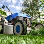 庭にDIYで芝を張ろう!ホームセンターで購入した芝は大丈夫?