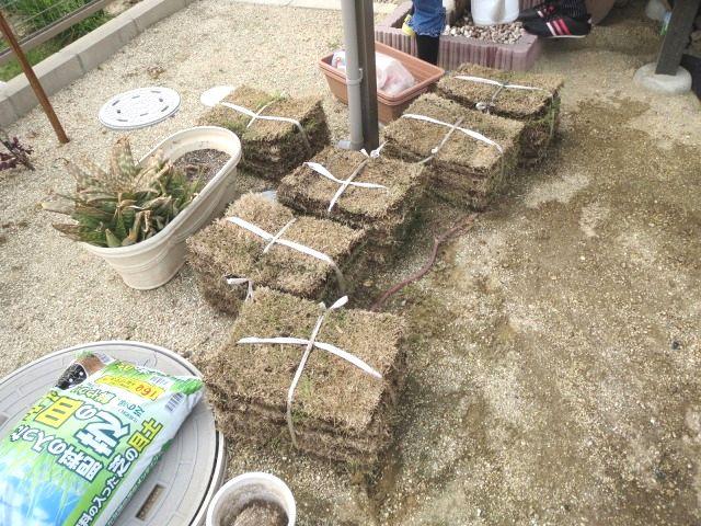 芝張り DIY